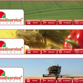 La Mediservice Calabria – website