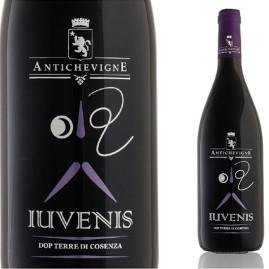 Iuvenis Antiche Vigne