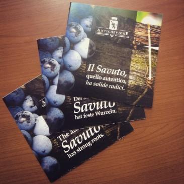 Antiche Vigne leaflets.