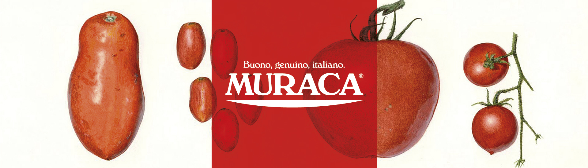 logotipo Muraca