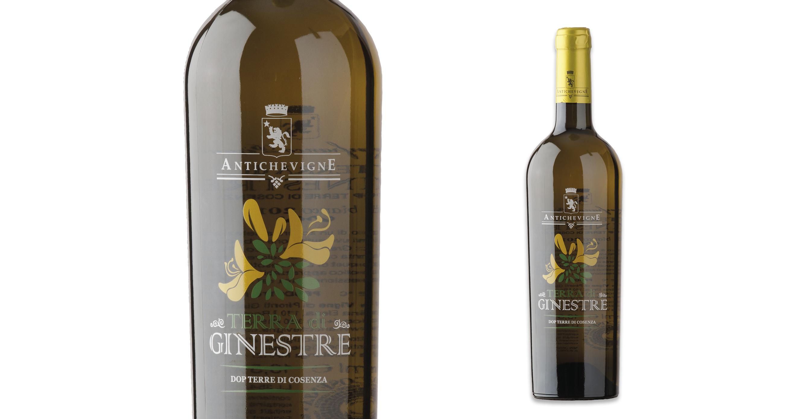 Terra di ginestre grafica vino